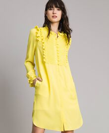 Hemdblusenkleid aus Seidenmischung mit Rüschen Gelb Frau 191TP2137-01