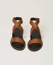 Leather sandals with rivets Leather Brown Woman 211TCT050-05