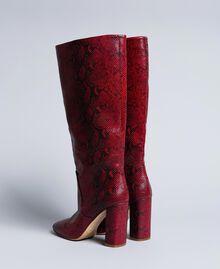 Bottes hautes en cuir Python Bordeaux Femme CA8PLJ-03