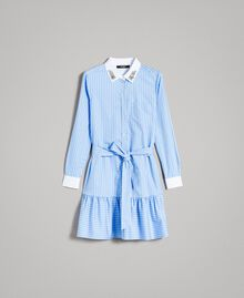 Popeline-Hemd-Kleid mit Stickerei Kornblumen Blau Frau 191MP2043-0S