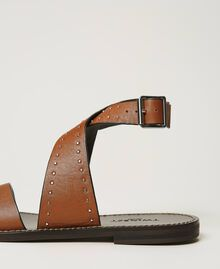 Leather sandals with rivets Leather Brown Woman 211TCT050-04