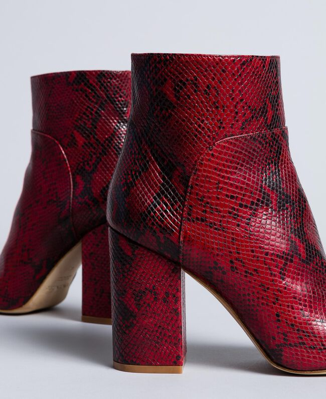 Animal print leather ankle boots Burgundy Python Woman CA8PL5-04