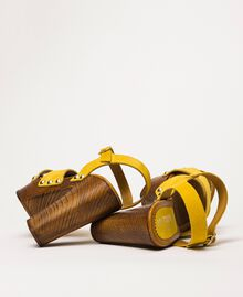 Suede clog sandals Ochre Yellow Woman 201MCT01A-02