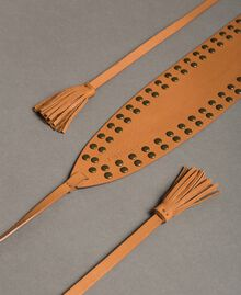 Studded leather sash Leather Brown Woman 191TO5332-01