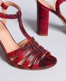 Sandales en cuir animalier Python Bordeaux Femme CA8PQ3-04