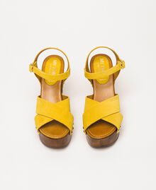 Suede clog sandals Ochre Yellow Woman 201MCT01A-05