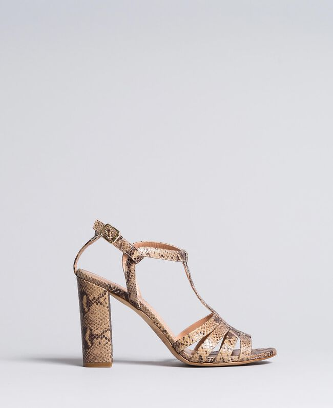 "Animal print leather sandals Brown ""Python Rock"" Woman CA8PQ3-01"