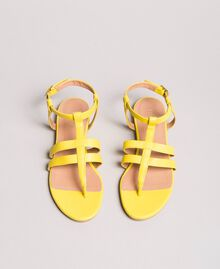 Sandales plates en cuir à imprimé animalier Jaune Femme 191TCP13A-04